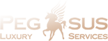 pegasus-onepage Логотип